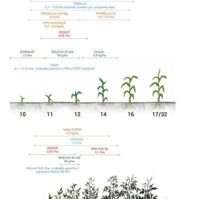 Technológia kukurica a zemiaky